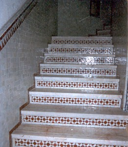 zellige-stairs-5